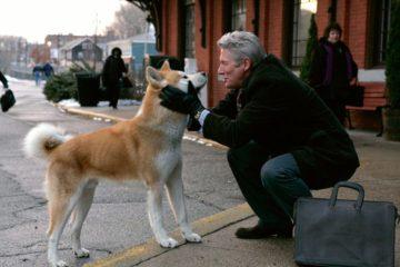 Film Persahabatan Manusia dan Anjing Terbaik