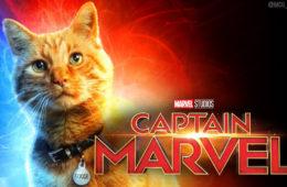 goose kucing captain marvel