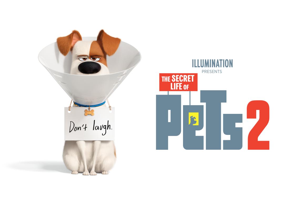 Review Film The Secret Life Of Pets 2 2019 Lebih Lucu Dan Lebih Menggemaskan Dari Film Prekuelnya Movieden