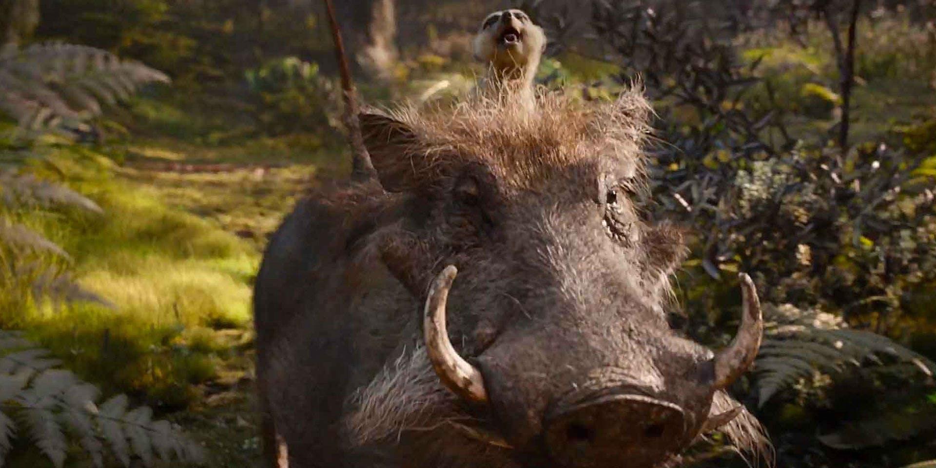 Timon Pumbaa Movieden