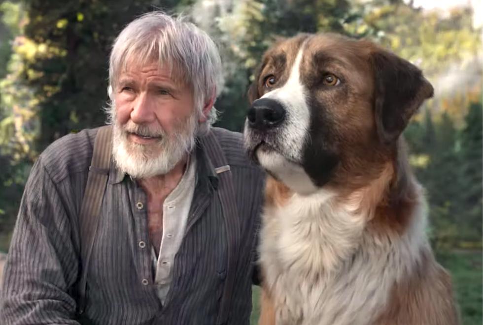 Review The Call Of The Wild (2020) – Film Anjing Yang Seru Dan ...